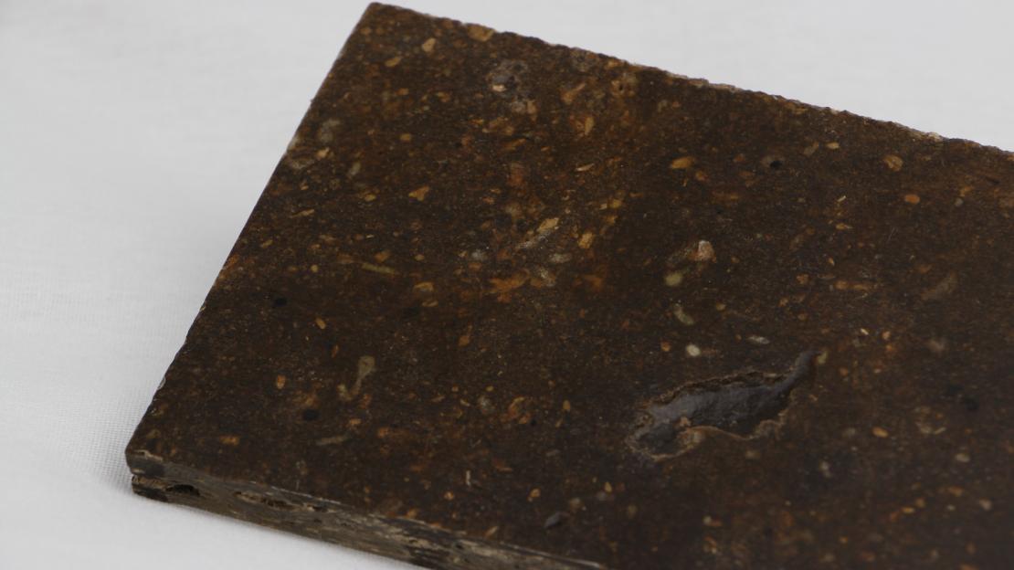 plaque-mégots-2