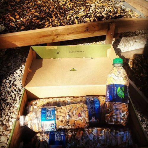 mégots tri recyclage greenminded